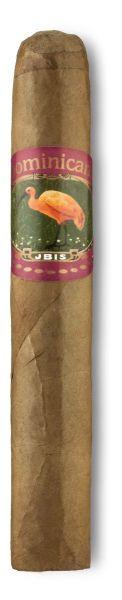 Diverse Zigarren Ibis Dominican Robusto (Packung á 10 Stück)